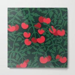 Tomato Plants in the Summer - Tomato Garden Gardening Metal Print