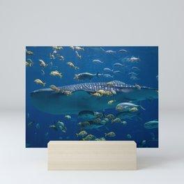 The Whale Shark Mini Art Print
