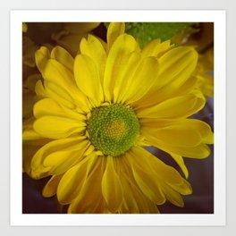 Sunny Yellow Flower Art Print
