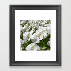white snow flowers IV Framed Art Print