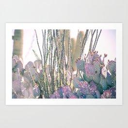Bright Desert Morning Art Print