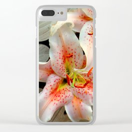 A Balancing Act Clear iPhone Case