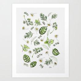 Scattered Garden Herbs Art Print