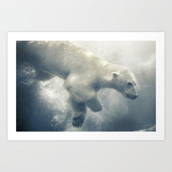 Polar Swim Art Print
