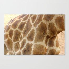 skin of a giraffe Canvas Print