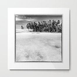 Indonesia, Coconut Palms in the Indian Ocean Metal Print