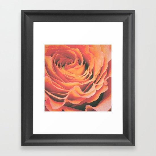 Le pétale de rose Framed Art Print
