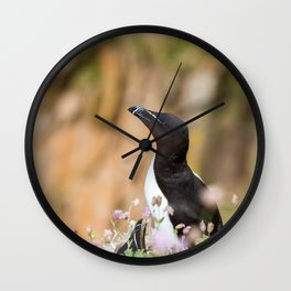 Razorbills - Ireland (RR 283) Wall Clock