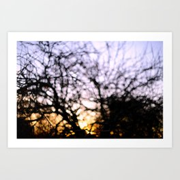 Sun of Bokeh Art Print