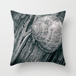 Time in a shell Throw Pillow