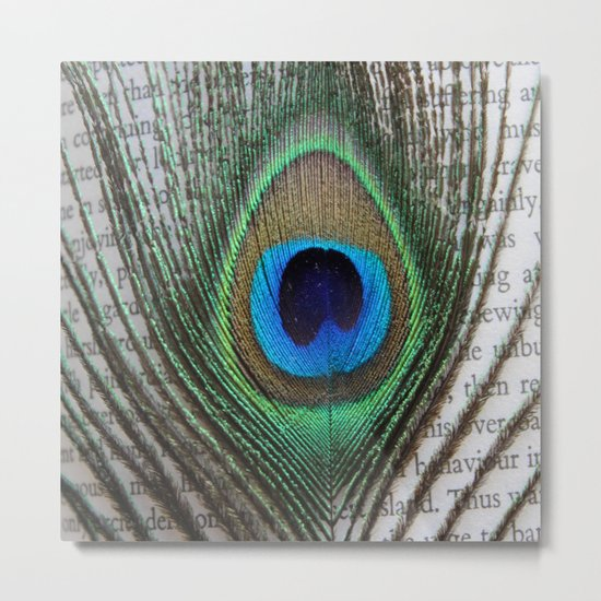 Peacock Feather on Old Paper  Metal Print