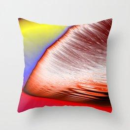 light splitter Throw Pillow