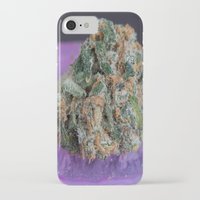 medical iPhone & iPod Cases featuring Jenny's Kush Medical Marijuana by BudProducts.us