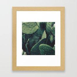 Fine art photography, macro photo, still life, food, kitchen decor, Apulia, Sicily Framed Art Print