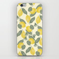 Citrus Pattern iPhone & iPod Skin