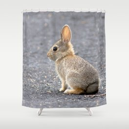 Watercolor Mountain Cottontail Rabbit 01, Run 'Lil Bun Shower Curtain