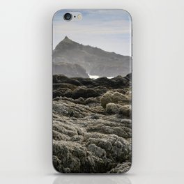 Bodega Head iPhone Skin