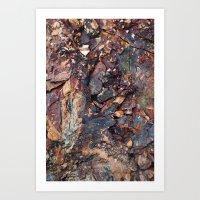 Shale. Art Print