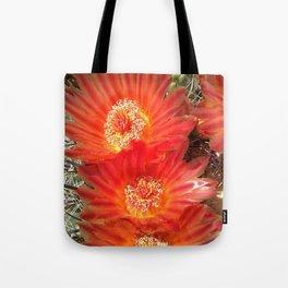 Barrel Cactus Blooms Tote Bag