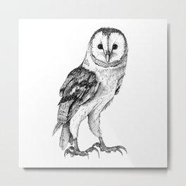 Barn Owl - Drawing In Black Pen Metal Print