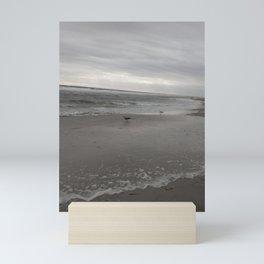Seagulls at the Shore Mini Art Print