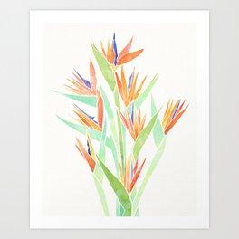 Birds of Paradise ~ tropical bouquet Art Print