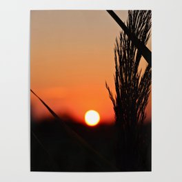 Through to the Setting Sun Poster