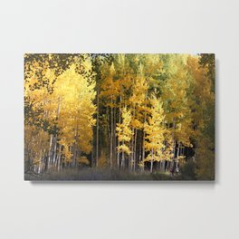 Heavenly Autumn Glow Metal Print