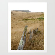 Navaro Bluffs, dilapidated old fence Art Print