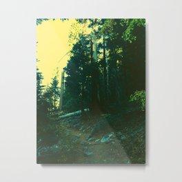0422 Metal Print