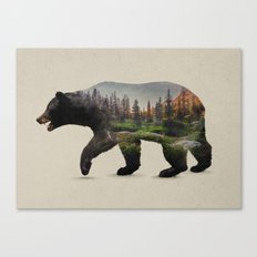 The North American Black Bear Canvas Print