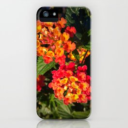 Fiery Lantana iPhone Case