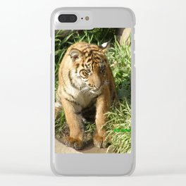 Young Tiger Clear iPhone Case