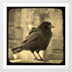 Antique Crow Art Print