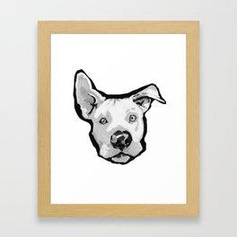 RESCUE ME Pit Bull Pitbull Dog Pop Art black and White Painting by LEA Framed Art Print