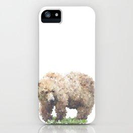 Penrose Tiling Bear iPhone Case