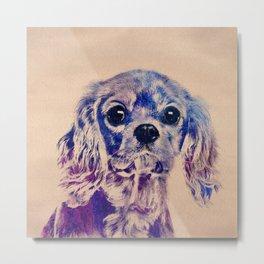 Cavalier King Charles Spaniel Puppy Metal Print