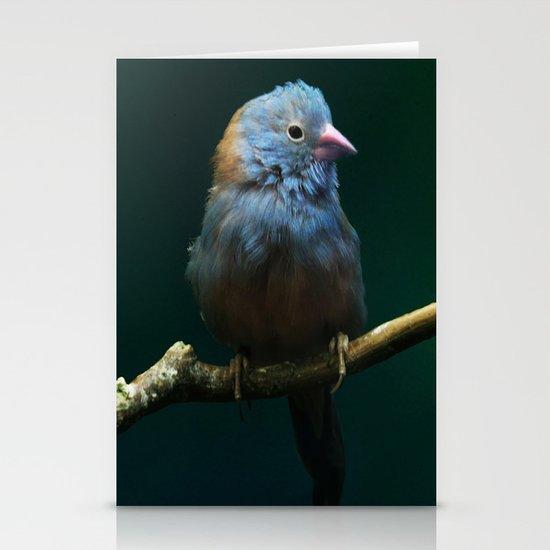 Cordon Bleu Canary Stationery Cards