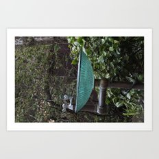 Glass Bowl Water Fountain Art Print