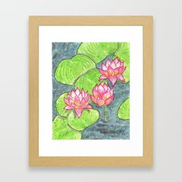 Water Lotus Framed Art Print