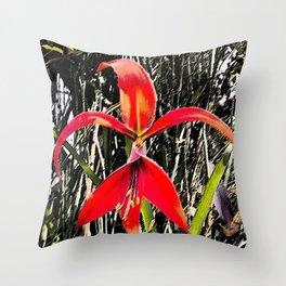 Flor de Quetzatlcoatl o Fleur de Lys Throw Pillow