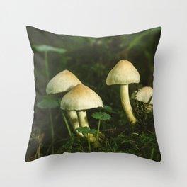 Fungus Sulphur Tuft (Hypholoma fasciculare) growing on a tree stump. Norfolk, UK. Throw Pillow