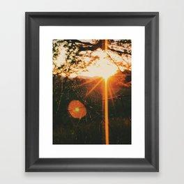 Shimmering Web • Appalachian Trail Framed Art Print