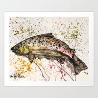 trout Art Prints featuring brown trout by Tricia Kibler