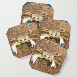 Ghost Crab In A Bucket Coaster