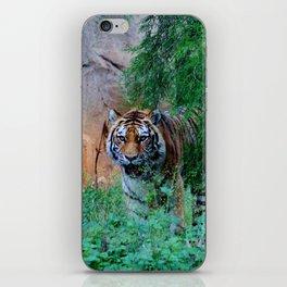 Siberian Tiger iPhone Skin