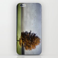 dressed in autumn iPhone & iPod Skin