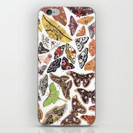 Saturniid Moths of North America iPhone Skin