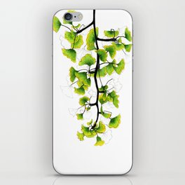 Ginkgo iPhone Skin