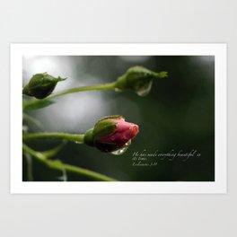 Pink Rosebud with scripture. Art Print